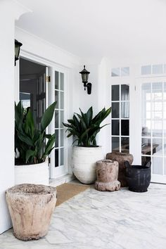 5 indoor plant trends taking over the fiddle leaf fig in 2020 Sick of seeing fiddle-leaf fig trees everywhere? We uncover the latest indoor plant trends that are sure to are find a place in every fashionable interior in Indoor Tropical Plants, Indoor Plant Decor, Outdoor Potted Plants, Indoor Tree Plants, Best Indoor Trees, House Plants Decor, Outdoor Gardens, Home Interior, Backyard Landscape Design