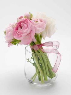 Frühlingsblumen Bilder   Für Sie