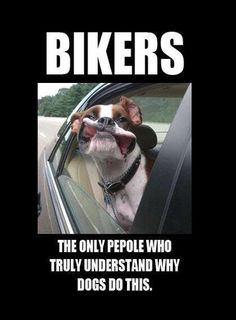 Image result for only bikers understand why dogs