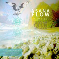 A digital collage to promo yoga class. Vinyasa Yoga. Bird of Prey. Hawk. Lotus Flower. Mountain. Water. Rocks.