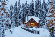 ***Emerald Lake Lodge (Yoho, BC) by Simon Ennals Photography (@simonennalsphotography) on Instagram x.w.