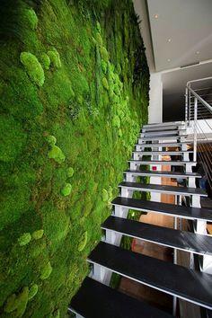 [裝置藝術]室内設計趨勢「苔蘚牆」 | Funtory設計生活