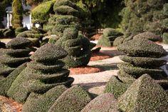 The Pearl Fryar Topiary Garden // Bishopville, South Carolina
