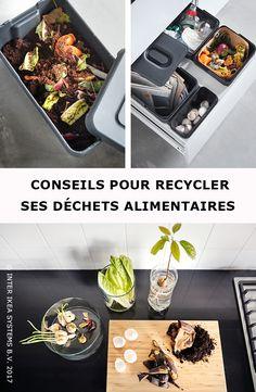 Lot de 10 Food Sandwich Plateau Plateau Set Avec Couvercle Buffet Party Réutilisable recycler