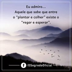 Boa Noite e Bons Sonhos!!! http://maisvidacomqualidade.com/