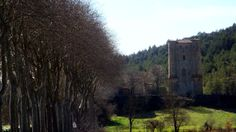 The never-defeated castle outside of Arques ... not far from the infamous site of the Poussin tomb from the DaVinci Code.