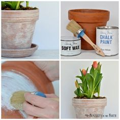 Paint terracotta pots with a mixture of Annie Sloan Chalk Paint and wax to give your flower pots an aged patina.