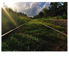 Escapemos un rato #tren #horizonte #viajar #Maschwitz #atardecer ✌️ Railroad Tracks, Country Roads, Instagram Posts, Train, Traveling, Train Tracks