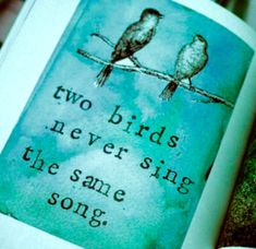 turquoise birds illustration