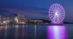 Overlooking the Potomac River, Gaylord National Resort & Convention Center places you near vibrant destinations. Visit MGM National Harbor and Joint Base Andrews. Great Places, Places To Go, Premier Hotel, Potomac River, Dc Travel, Easter Weekend, Convention Centre, Weekend Getaways, Best Hotels