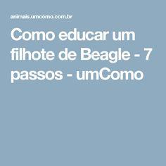 Como educar um filhote de Beagle - 7 passos - umComo