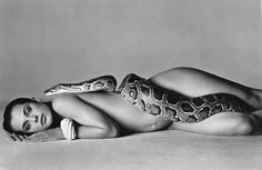 Kaylin Fitzpatrick: Richard Avedon... Photography Icon