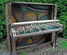 This is a unique planter made from an old piano, at Oregon Gardens, in Oregon.
