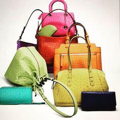 accessories from the Via Veneta Collection ; Classic, Bags, Accessories, Collection, Style, Fashion, Handbags, Moda, La Mode