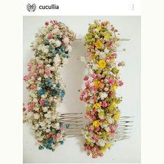 Cucullia.com