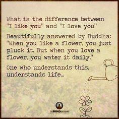 ...quando vc gosta de uma flor, vc a arranca; quando vc ama a flor, vc a rega todos os dias...