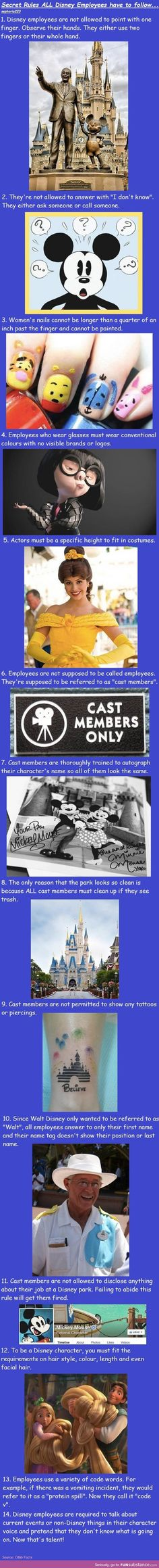 disney employee facts                                                                                                                                                      More