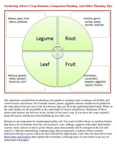 Companion Planting Chart  Complete Companion Planting Guide In
