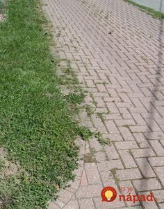hdHow to get a weed-free brick driveway (or patio) that stays that way. A DIY weed prevention method that lasts. by changing the sand to polymeric sand. Stop buying weed killers or weeding by hand! Brick Driveway, Brick Path, Circle Driveway, Driveway Ideas, Flagstone Pathway, Stone Walkway, Landscaping Supplies, Backyard Landscaping, Landscaping Ideas