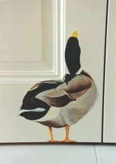 Duck Mural for a Paradise Valley Home by Doug Morris: Duck Mural for a Paradise Valley Home by Doug Morris: Related posts: Home Decor Outlets Nach Hause Inspiration: Just_mai_self – Querbehang, Morris, Painted Doors, Bird Art, Wall Murals, Wall Mural Painting, Bedroom Murals, Diy Bedroom, Home Deco, Painted Furniture