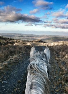 Beth Langley's Endurance Blog (UK)