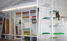 Jayne, designer of the beautiful retro cat beds from Like Kittysville, created these awesome climbing shelves in her garage using only scrap lumber, some of which she pulled right out of the dumpster. It goes to show that a creative design.