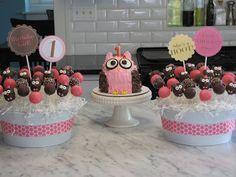 Owl Cake & Owl Pops