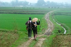 Vietnam | Steve McCurry