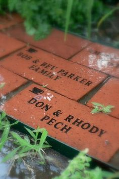 Sell space! Plaques on walls, bricks, hanging windchimes in memory of pups passed, etc...