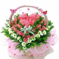 Beautiful Flowers Pictures, Beautiful Flowers Wallpapers, Beautiful Gif, Flower Pictures, Beautiful Roses, Birthday Cake Write Name, Birthday Cake Writing, Mood Wallpaper, Flower Wallpaper