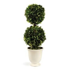 Napa Home Double-Ball Preserved Topiary, Green/White, Housed in a neutral cement vessel, this preserved English boxwood is perfect for adding a lush green note to any decor. For indoor use only. Topiary Decor, Topiary Plants, Potted Trees, Decoration, Boxwood Plant, Boxwood Topiary, Topiaries, Artificial Boxwood, Artificial Plants