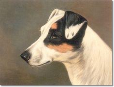 jack russell terrier free printable cards | ... Wheeler - Head of a Jack Russell Terrier Archival Fine Art Paper Print