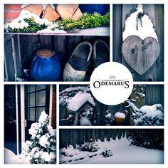 Winter collage Odemarus