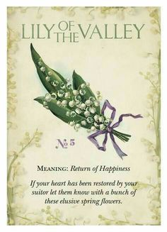 Vintage Language of Flowers. There was a lovely patch of Lily of the Valley in our back yard garden when we moved into our home. No wonder we felt like we would be happy here! Flower Meanings, Flowers And Their Meanings, Symbols And Meanings, Language Of Flowers, Flower Quotes, Botanical Prints, Spring Flowers, Planting Flowers, Floral Arrangements