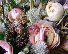 Peonies, Ranunculus, & Queen Anne's Lace. I <3 Lavender