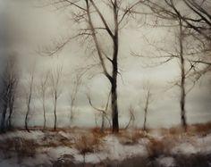 Bruce Silverstein Gallery - Todd Hido:Landscapes