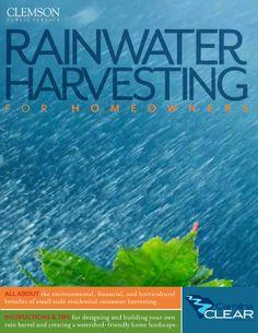 Rainwater Harvesting for Homeowners