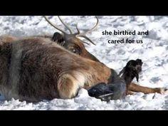 Following the Deer Trods - YouTube