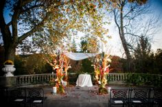 West Terrace Ceremony