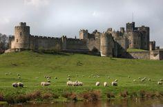 Excursión de un día al Castillo de Alnwick y los Borders escoceses desde Edimburgo