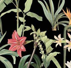 Soil&Co Fabrics, Plants, Tejidos, Plant, Cloths, Fabric, Textiles, Planets