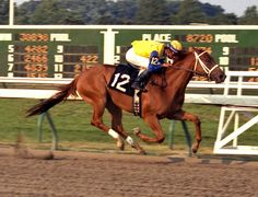 New Monmouth Park Hall of Fame Honors 4 Horses