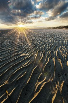 Rathtrevor Beach Provincial Park is located 3 km south of Parksville on Hwy 19a, on central Vancouver Island.
