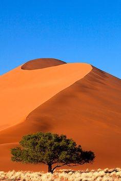 Sossusvlei Namibie het mooist bij zonsopgang of zonsondergang waardoor de diep rode kleuren het meest tot hun recht komen.