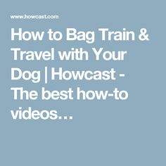 How to Bag Train & Travel with Your Dog | Howcast - The best how-to videos…