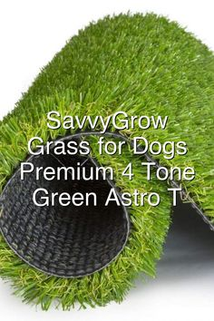 AmazonSmile SavvyGrow Artificial Grass for Dogs AstroturfRug Premium 4 Tone Synthetic Green Astro Turf Easy to Clean with Drain Holes Soft Fake Turfs for Dog Cats Patios Non Toxic 33 x 5 ft Door Mat Garden Outdoor Astro Turf Garden, Artificial Grass For Dogs, Hydraulic Cars, Fake Turf, Outdoor Gardens, Green, Easy, Courtyards, Gardens