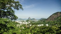 Reforestation in the 2016 Olympic Games Host Country