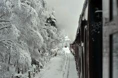 Santa Express at the Strathspey Steam Railway Aviemore Scotland.