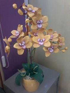 орхидеи – 23 фотографии