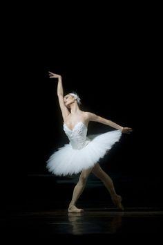""" Jurgita Dronina - Principal Dancer the Dutch National ballet in Swan Lake - Photo by Angela Sterling "" Ballet Images, Ballet Pictures, Ballet Poses, Ballet Dancers, Ballerinas, Dance Photos, Dance Pictures, Dance Photography Poses, Ballet Performances"